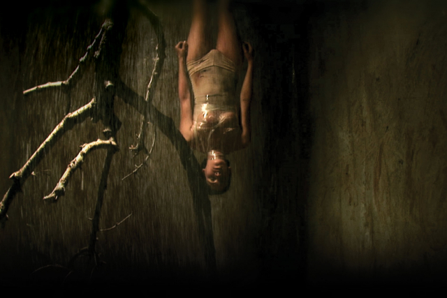 a woman hanging upside down in a foresty scene